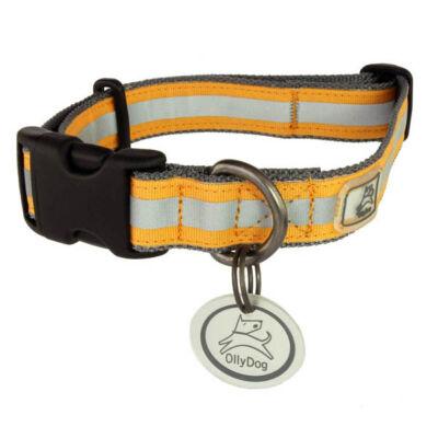 Olly Dog Nightlife nyakörv bilétával - szürke/narancs
