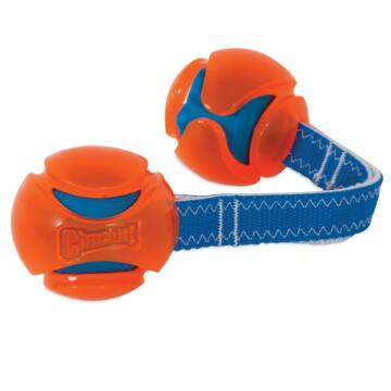 Chuckit! HydroSqueeze Duo Tug M
