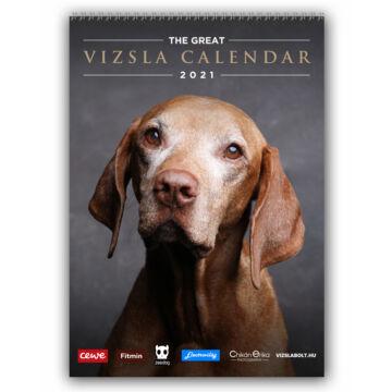 the great vizsla calendar