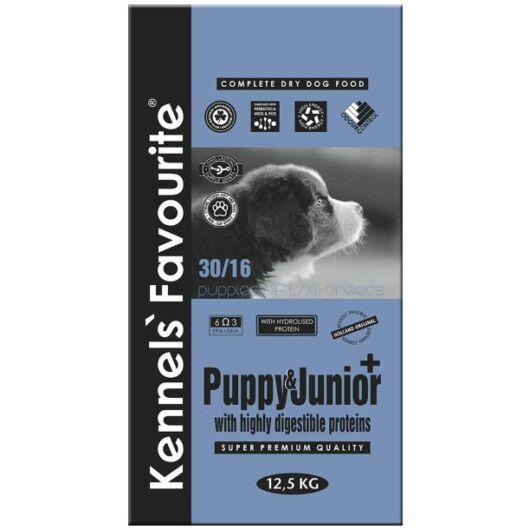 kennels favourite puppy junior plus