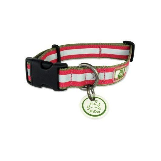 Olly Dog Nightlife nyakörv bilétával - sage/fuchsia
